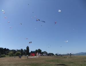 kites behind the Planetarium